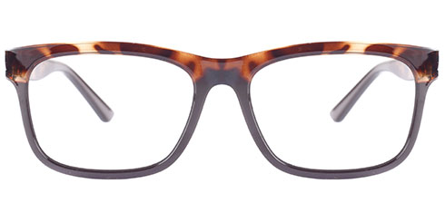 Discover ST002 Tortoise